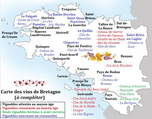 Du vin en Bretagne : Depuis toujours et pour toujours !