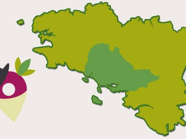 Le Pays du Vannetais, une histoire glorieuse !