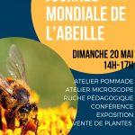 L'Abeille noire : Une abeille endémique à la Bretagne.