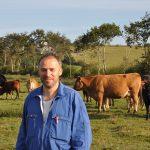 Vente de producteur : Caisse de viande de bœuf (Limousine) près de Quimper.