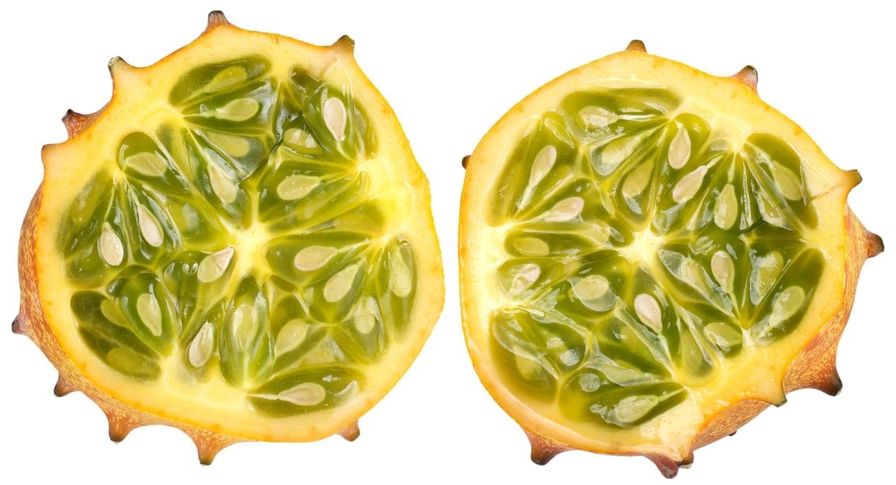 Le kiwano, un fruit exotique qui pousse en Cornouaille (Bretagne) !