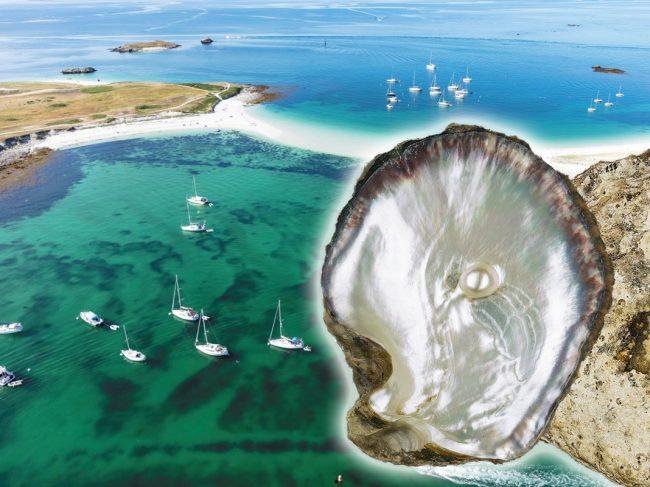 La Perle des Glénan : Une nouvelle richesse Bretonne