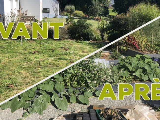 J'ai transformé ma pelouse en potager ! [GUIDE]